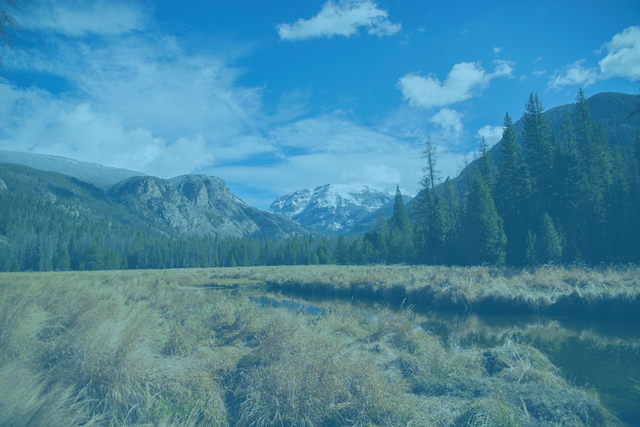 Nature picture of a field, trees, and mountains